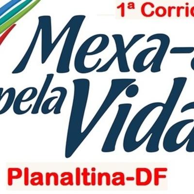 Mexasepelavida2